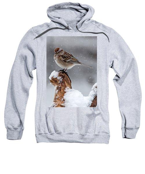 American Tree Sparrow In Snow Sweatshirt
