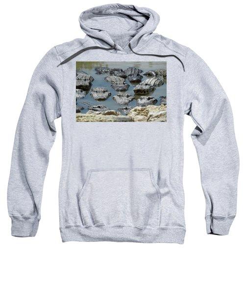 An America Alligators In Swamp Sweatshirt