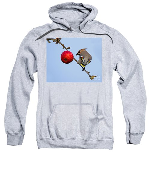 An Apple A Day... Sweatshirt