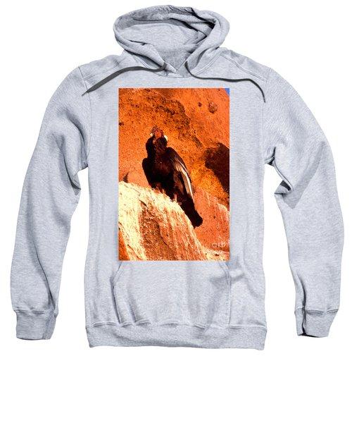 Andean Condor Sweatshirt