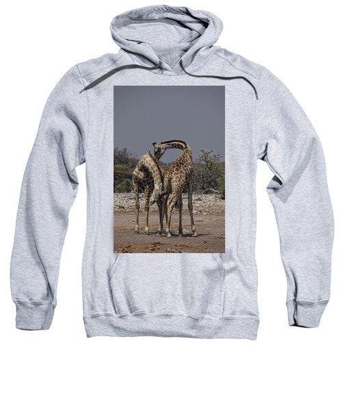 Angolan Giraffe, Namibian Giraffe Sweatshirt