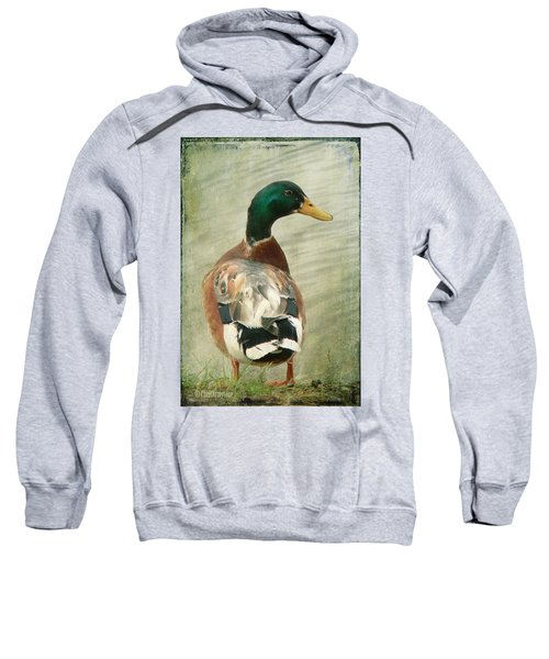 Another Duck ... Sweatshirt