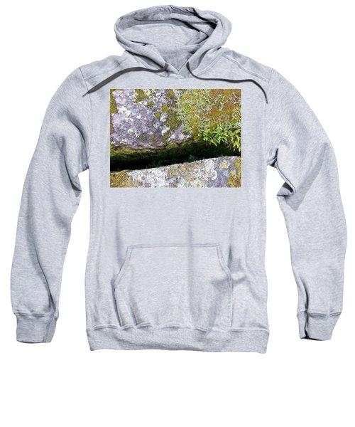 Another World Series 8 Sweatshirt