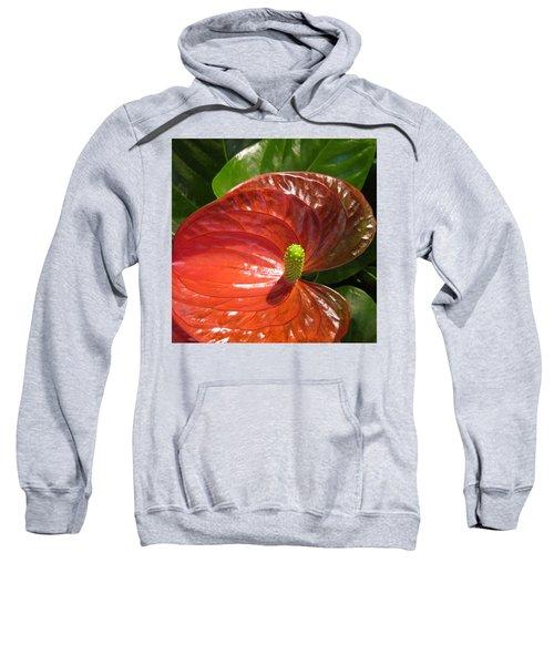 Anthurium Sweatshirt