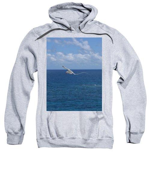 Antigua - In Flight Sweatshirt