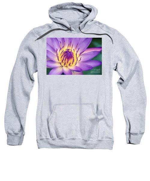 Ao Lani Heavenly Light Sweatshirt