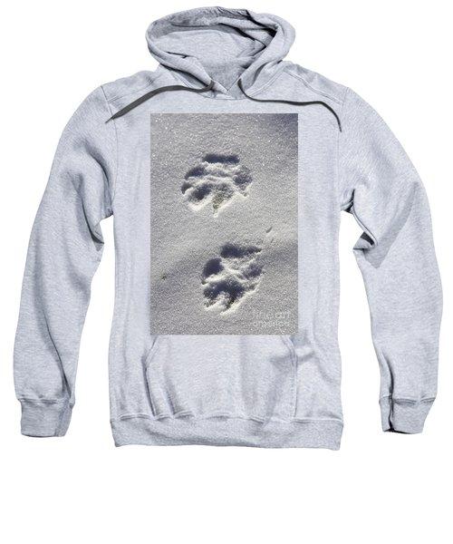 Arctic Wolf Tracks Sweatshirt