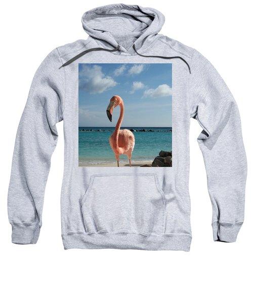 Aruba Hairy Eyeball Sweatshirt
