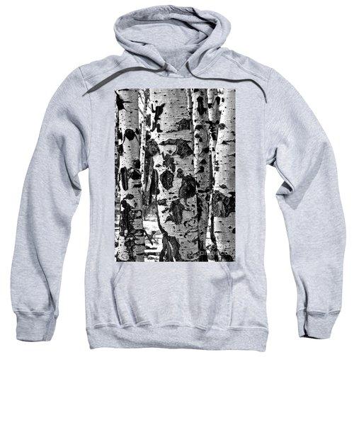 Sweatshirt featuring the photograph Aspen Art by Mae Wertz