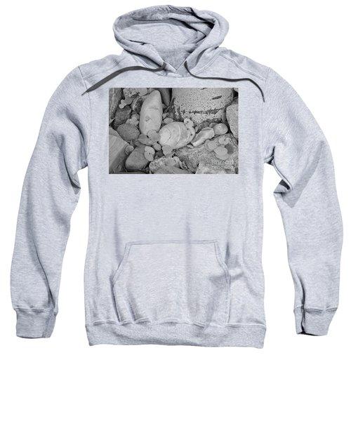 Aspen Leaves On The Rocks - Black And White Sweatshirt