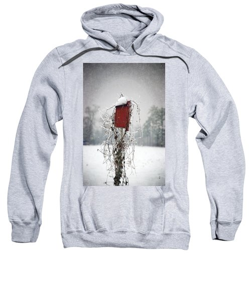 At Home In The Snow Sweatshirt