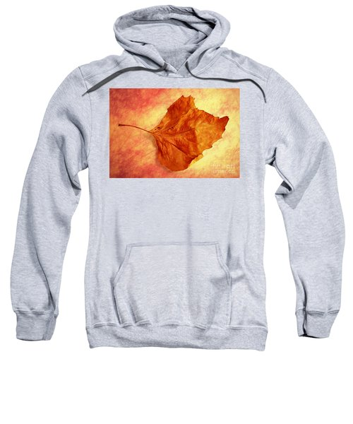 Autumn Cometh Sweatshirt