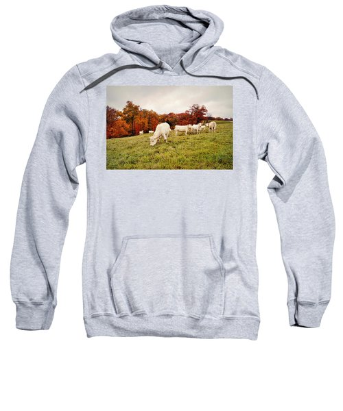 Autumn Pastures Sweatshirt