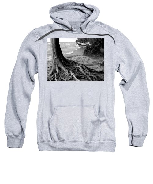 B And W Cedar Roots At Cave Point Sweatshirt