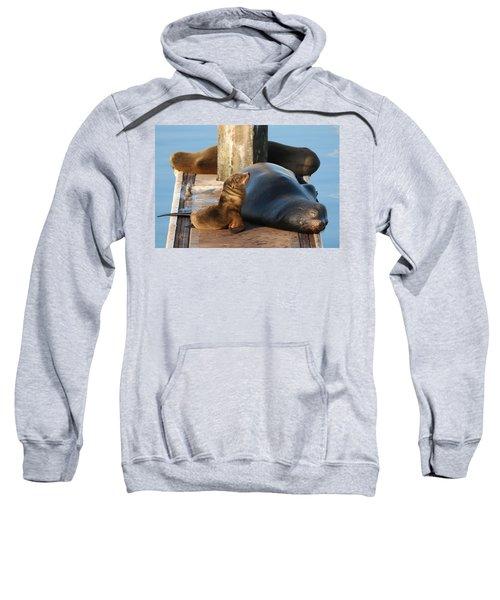 Baby And Me  Sweatshirt