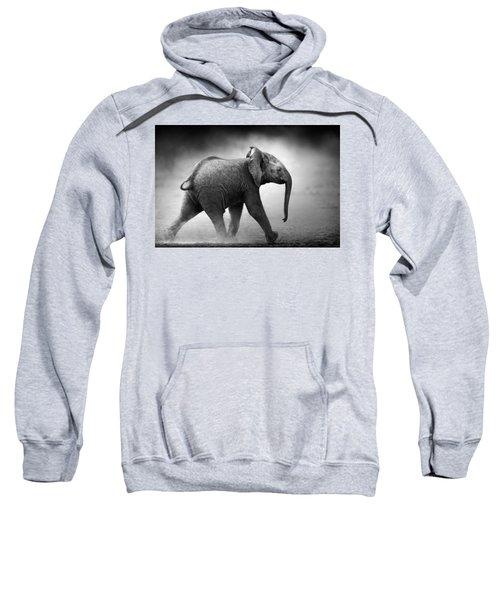 Baby Elephant Running Sweatshirt
