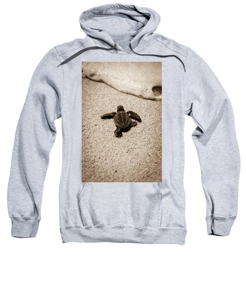 Baby Sea Turtle Sweatshirt