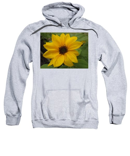 Baby Sunflower Sweatshirt