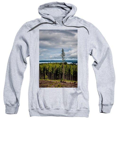 Logging Road Ocean View  Sweatshirt
