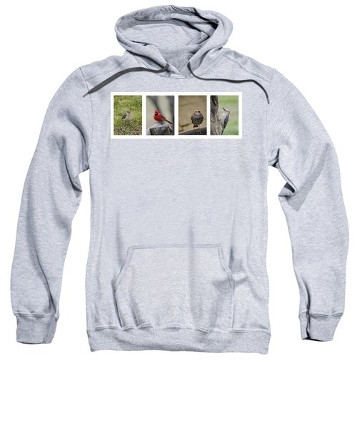 Backyard Bird Series Sweatshirt