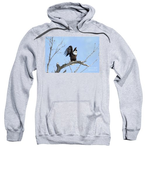 Bald Eagle With Wings Pulled Up Sweatshirt