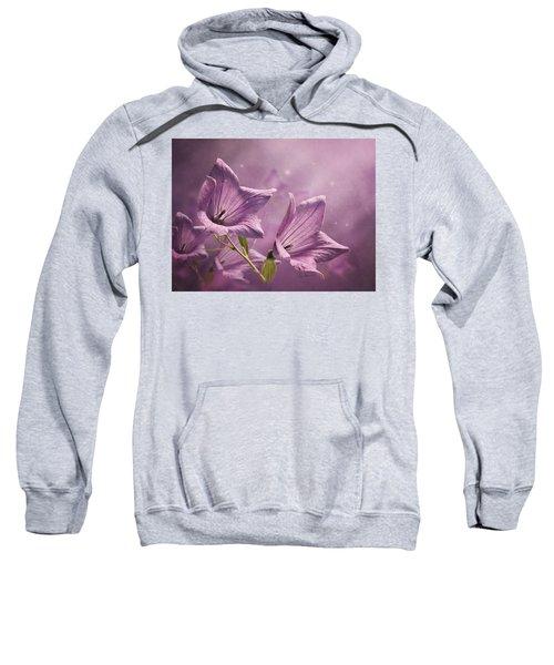 Balloon Flowers Sweatshirt