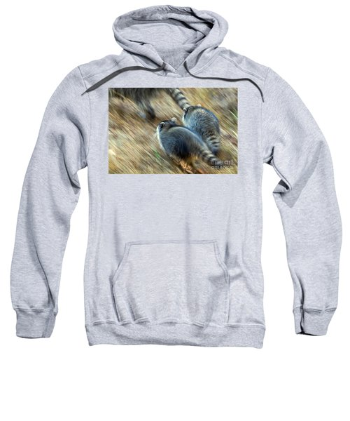 Bandits On The Run Sweatshirt