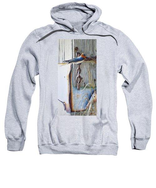 Barn Swallow Sweatshirt