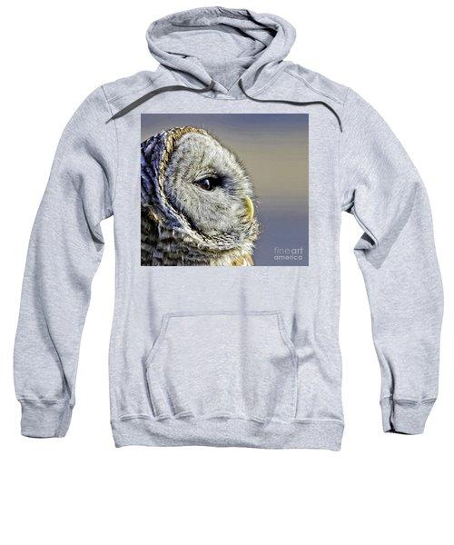 Barred None Sweatshirt