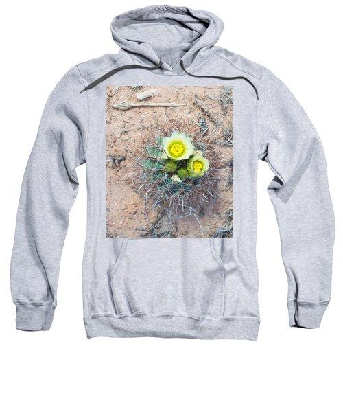 Barrel Cactus Blossoms Sweatshirt