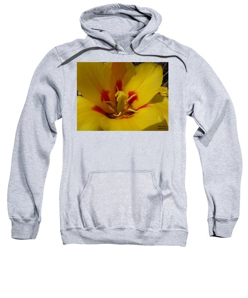 Be Drawn In - Signed Sweatshirt