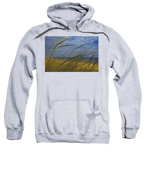 Beach Grass On A Sand Dune At Glen Arbor Michigan Sweatshirt