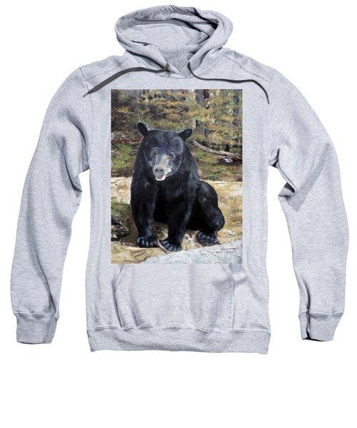 Bear - Wildlife Art - Ursus Americanus Sweatshirt