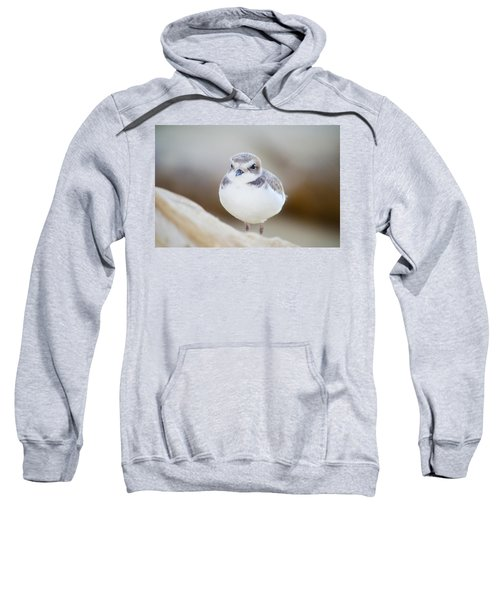 Beautiful Bird Sweatshirt