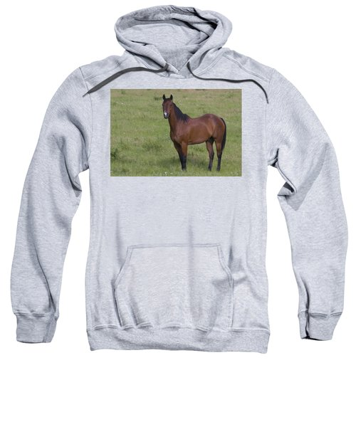 Beautiful Sweatshirt