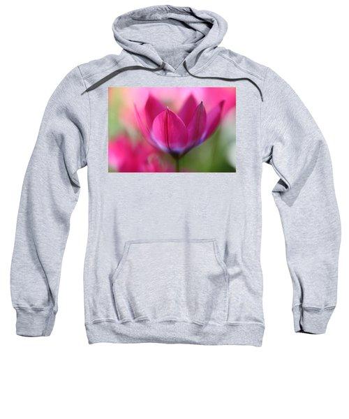 Beautiful Pink Sweatshirt
