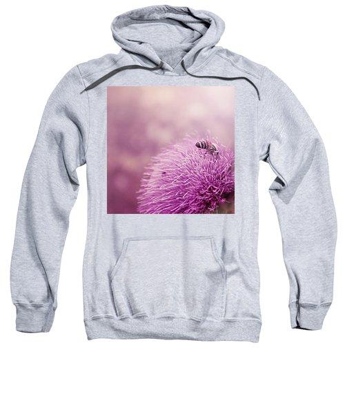 Beauty And The Bee Sweatshirt