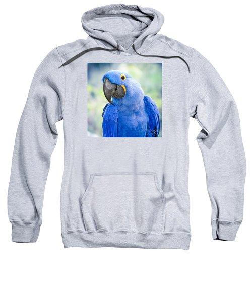 Beauty Is An Enchanted Soul Sweatshirt