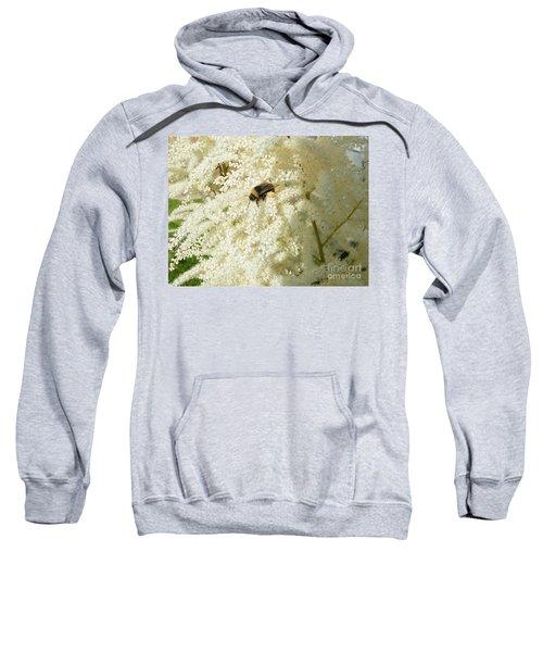 Bee Gathering Pollen Sweatshirt