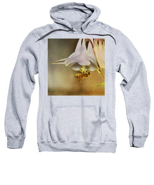 Beedangled Sweatshirt