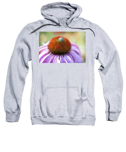 Beetle Bug Sweatshirt