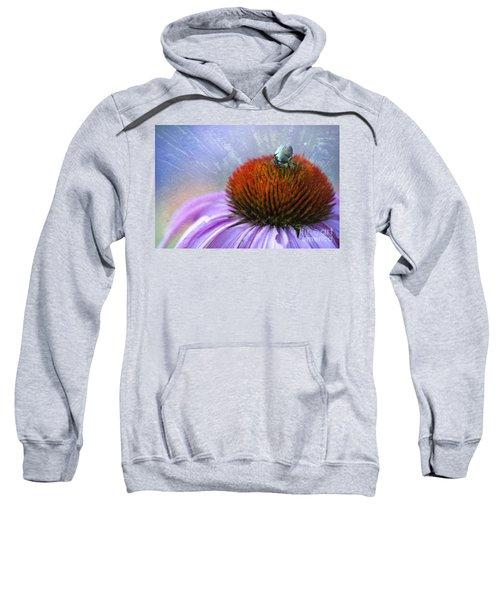 Beetlemania Sweatshirt