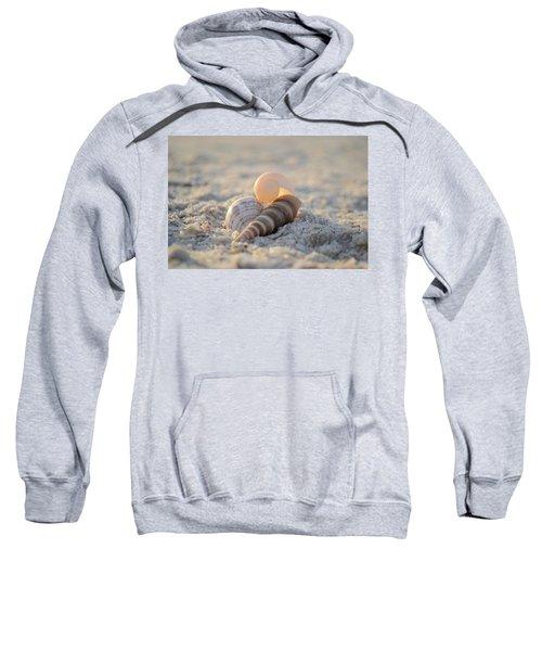 Beginning Again Sweatshirt