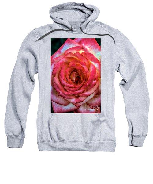 Bicolor Rose Sweatshirt