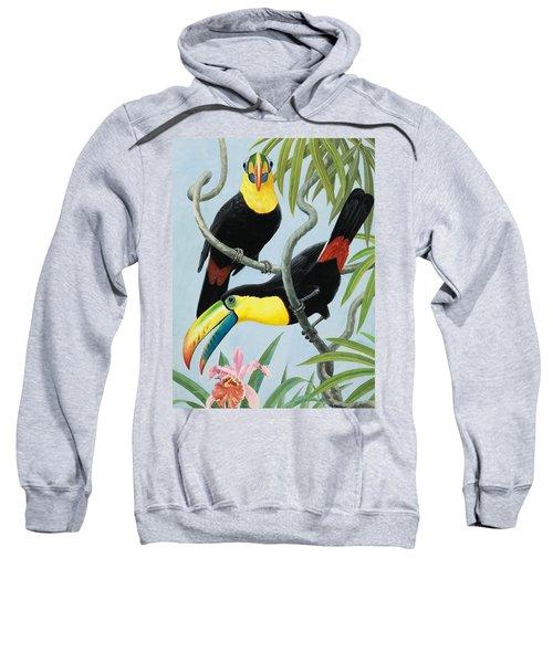 Big-beaked Birds Sweatshirt