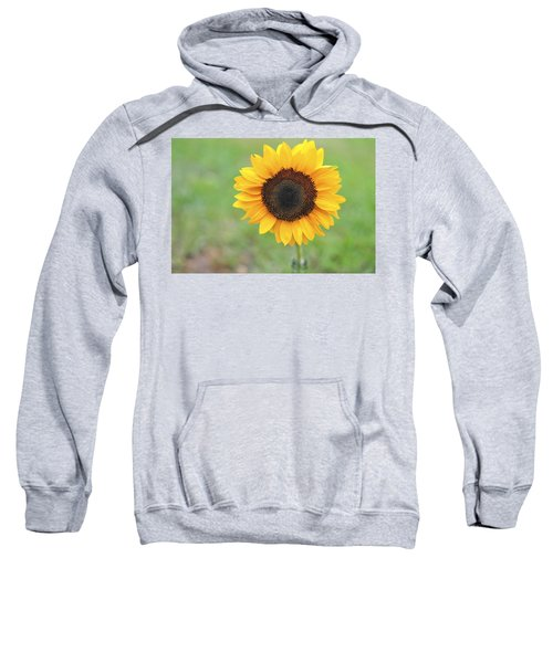 Big Bright Yellow Colorful Sunflower Art Print Sweatshirt