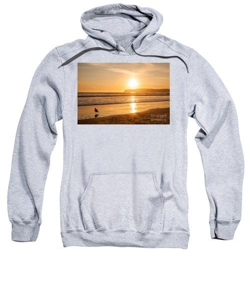 Bird And His Sunset Sweatshirt