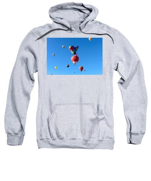 Bird Balloon Sweatshirt