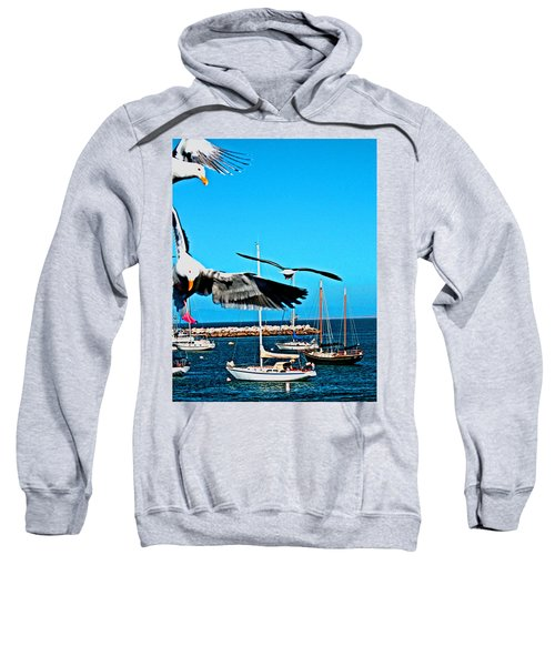 Birds In Paradise Sweatshirt