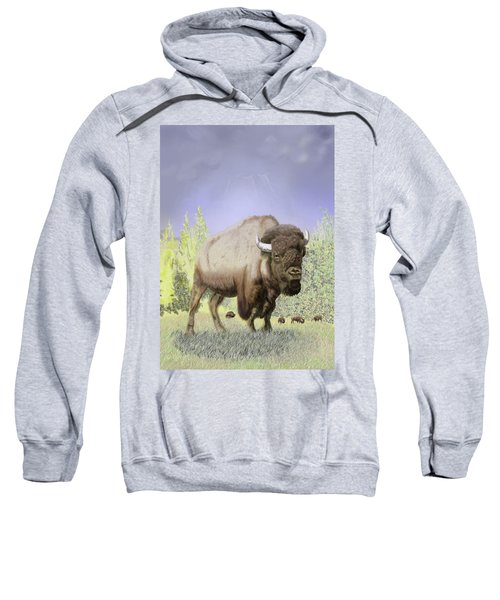 Bison On The Range Sweatshirt